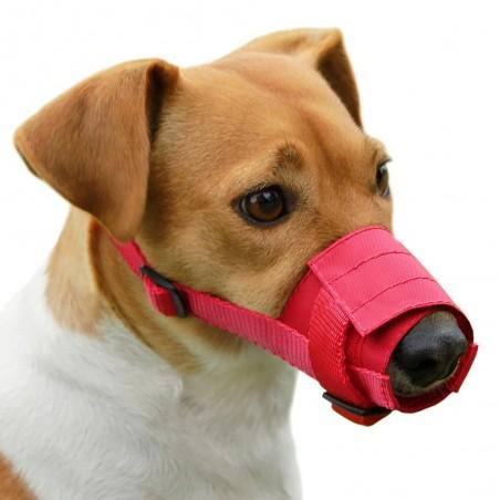 Botnita reglabila pentru Yorkshire Terrier , Pudel , Cocker Spaniel , Spitz : Dog Extreme