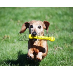 Jolly pet bone large yellow