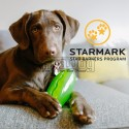 Jucarie interactiva pentru caini Academia Starmark